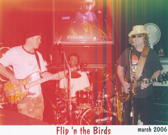 FLIP and the birds 2006